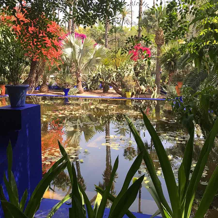 Marrakesh-gardens-Yves-St