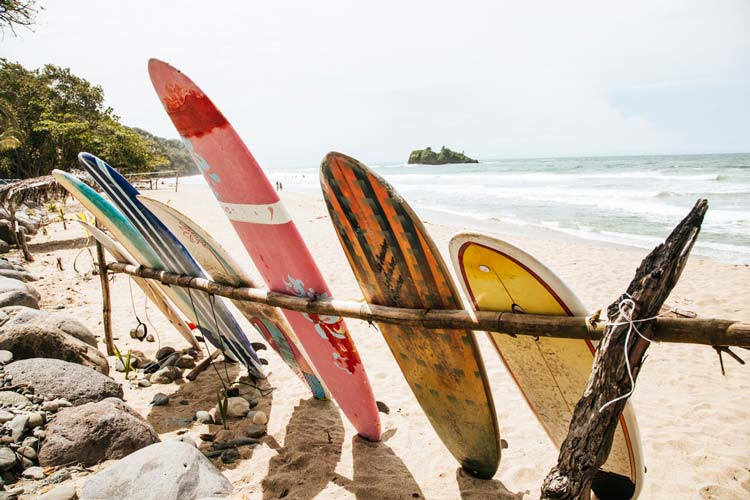 Costa Rica's beaches are full of life and diversity