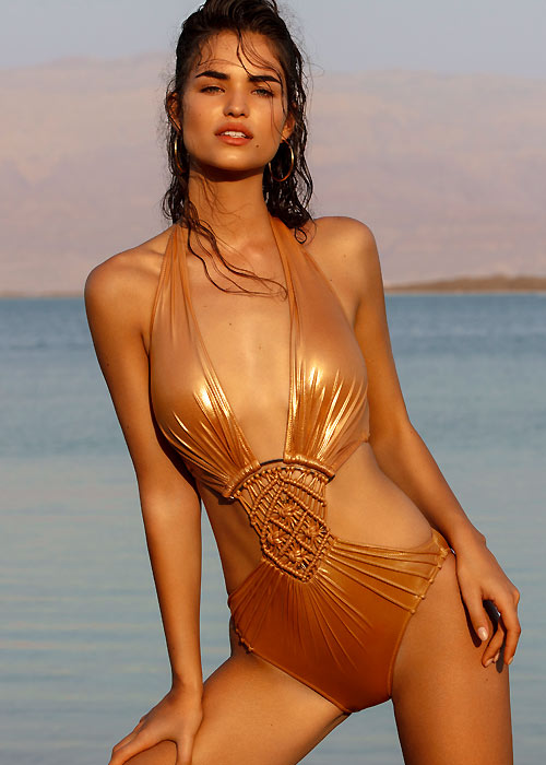 Gottex Glamorous Plunge Cut Out swimsuit