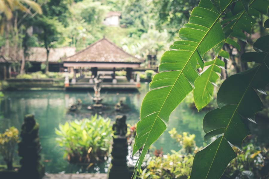 Spa garden in Bali, Indonesia